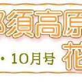 花子便りアイキャッチ1